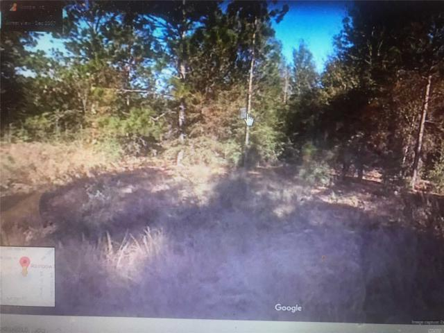 Rainbow Park, Out Of Area Town, FL 34481 (MLS #3067323) :: Netter Real Estate