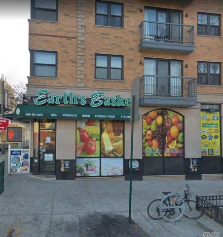 599 4 Ave, Brooklyn, NY 11215 (MLS #3067704) :: The Lenard Team