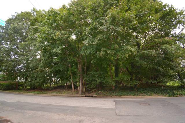 4 Rutherford St, St. James, NY 11780 (MLS #3070822) :: Netter Real Estate