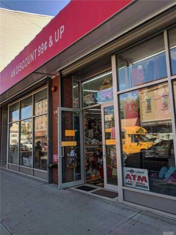 110 Jamaica Ave, Brooklyn, NY 11207 (MLS #3074389) :: Shares of New York