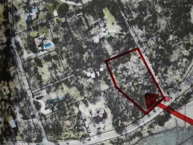 Dyke Rd, E. Setauket, NY 11733 (MLS #3085113) :: Netter Real Estate