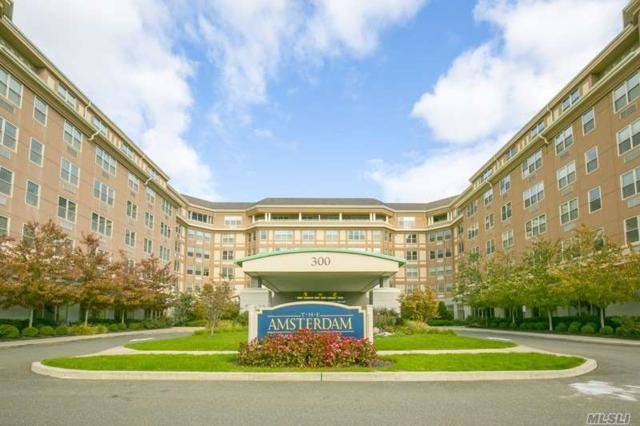 300 East Overlook #550, Port Washington, NY 11050 (MLS #3093049) :: Keller Williams Points North
