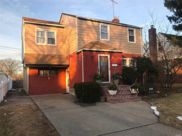 222 Norfeld Blvd, Elmont, NY 11003 (MLS #3101916) :: The Lenard Team