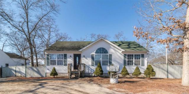 20 Carl Pl, Patchogue, NY 11772 (MLS #3102516) :: Signature Premier Properties