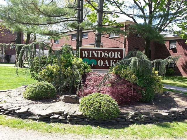 219-73 74th Ave Lower, Bayside, NY 11364 (MLS #3103873) :: Shares of New York