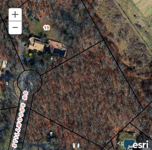 Stillwoods Rd, Brookhaven, NY 11719 (MLS #3107961) :: Keller Williams Points North