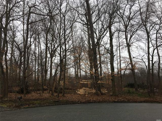 17 Twin Ponds St, Great Neck, NY 11024 (MLS #3108405) :: Netter Real Estate
