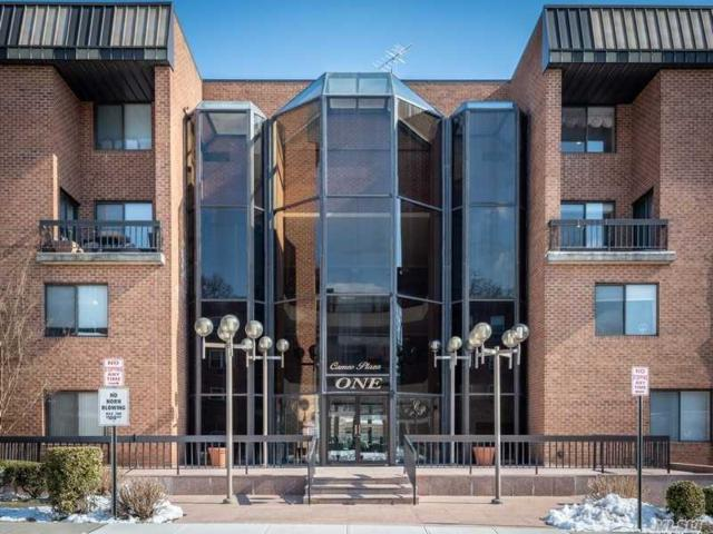 1 Ipswich Ave #321, Great Neck, NY 11021 (MLS #3108414) :: Keller Williams Points North