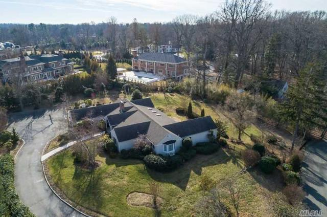 215 Dock Ln, Great Neck, NY 11024 (MLS #3109218) :: Shares of New York