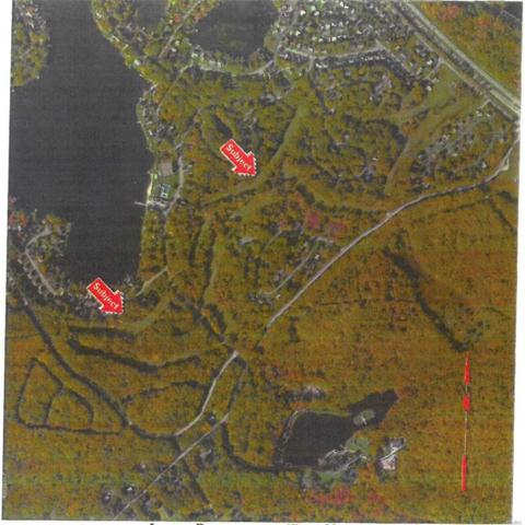 Wolf Lake Rd, Out Of Area Town, NY 12775 (MLS #3113313) :: Netter Real Estate