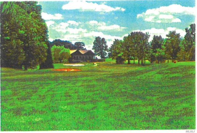 38 Eagle Dr, Out Of Area Town, NY 12783 (MLS #3113331) :: Netter Real Estate