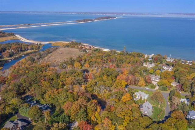 Sag Harbor, NY 11963 :: Netter Real Estate