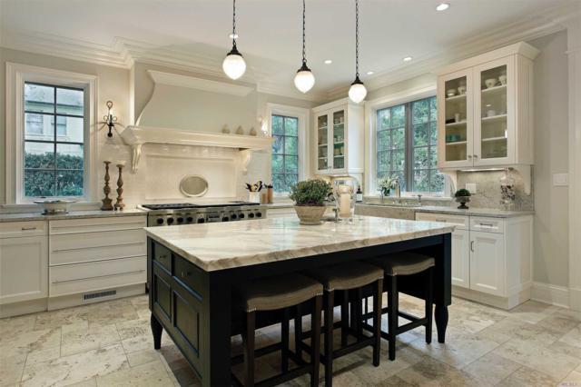 387 Salem Ct, Hauppauge, NY 11788 (MLS #3119646) :: Signature Premier Properties