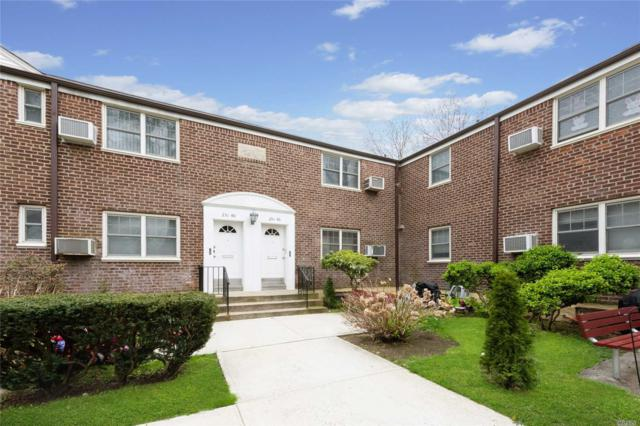 251-46 61st Ave Lower, Little Neck, NY 11362 (MLS #3121868) :: Shares of New York