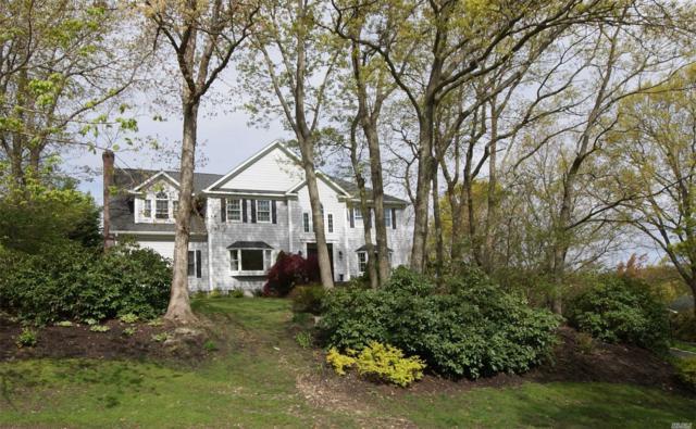 114 Alden Dr, Port Jefferson, NY 11777 (MLS #3129477) :: Keller Williams Points North