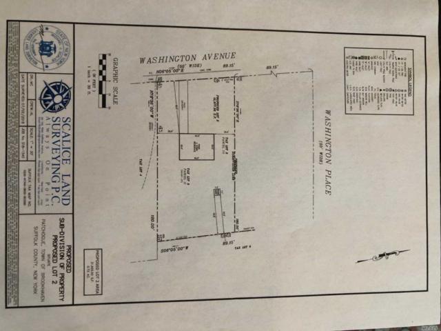 163 A Washington Ave, Patchogue, NY 11772 (MLS #3130805) :: Signature Premier Properties