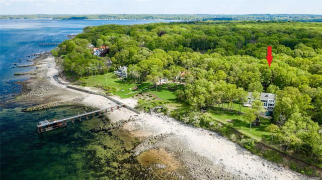 14 Sound Bay Dr, Lloyd Neck, NY 11743 (MLS #3130929) :: Signature Premier Properties