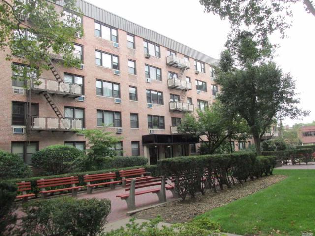 5 Birchwood Ct 2H, Mineola, NY 11501 (MLS #3132964) :: Shares of New York