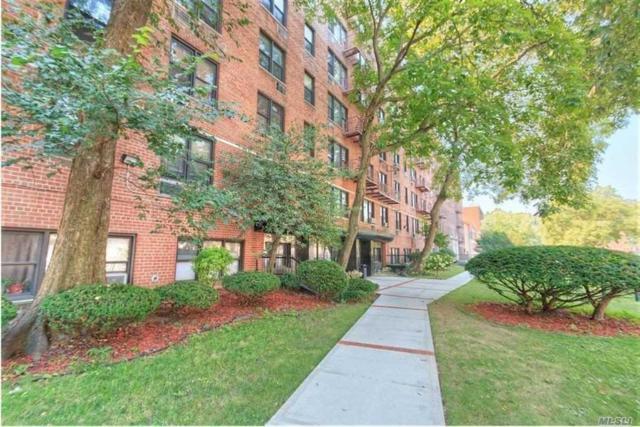 310 Lenox Rd 5G, Brooklyn, NY 11236 (MLS #3137306) :: Shares of New York