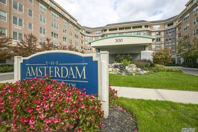 300 East Overlook #520, Port Washington, NY 11050 (MLS #3138854) :: Shares of New York