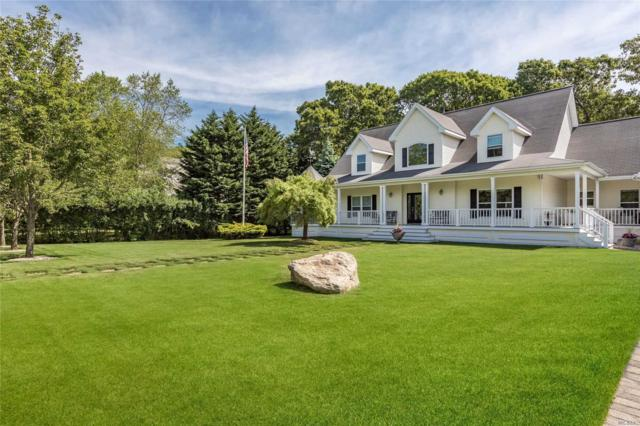 17 Briana Ct, East Moriches, NY 11940 (MLS #3139921) :: Netter Real Estate