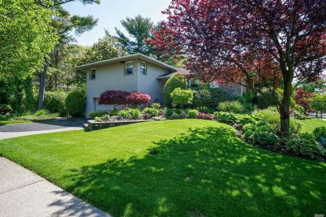 102 Maytime Dr, Jericho, NY 11753 (MLS #3141616) :: HergGroup New York