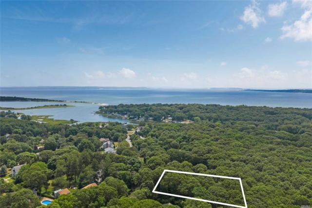 300 Corey Creek Ln, Southold, NY 11971 (MLS #3149691) :: Netter Real Estate