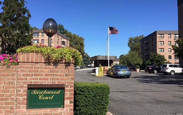 4 Birchwood Ct 5A, Mineola, NY 11501 (MLS #3166189) :: Kevin Kalyan Realty, Inc.