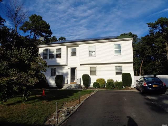 53 Carver Blvd, Bellport, NY 11713 (MLS #3166594) :: Netter Real Estate