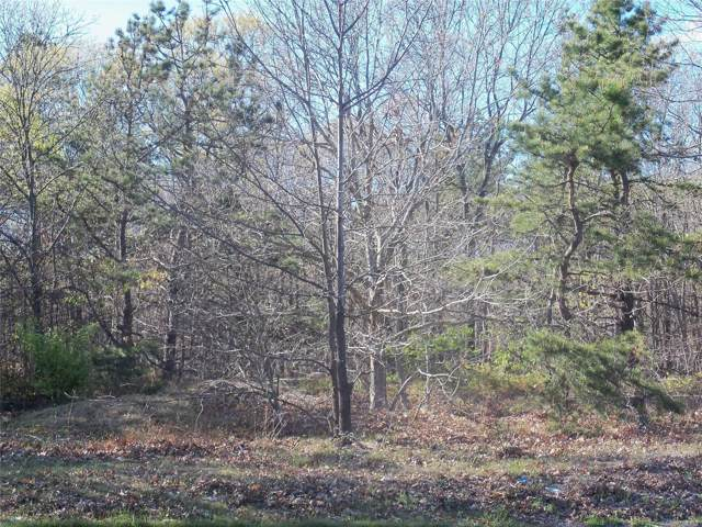 Granny Rd, Medford, NY 11763 (MLS #3174136) :: Signature Premier Properties