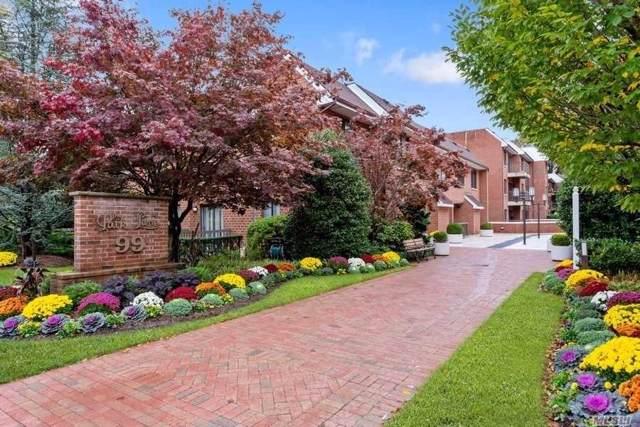 99 S Park Ave #325, Rockville Centre, NY 11570 (MLS #3179530) :: Signature Premier Properties