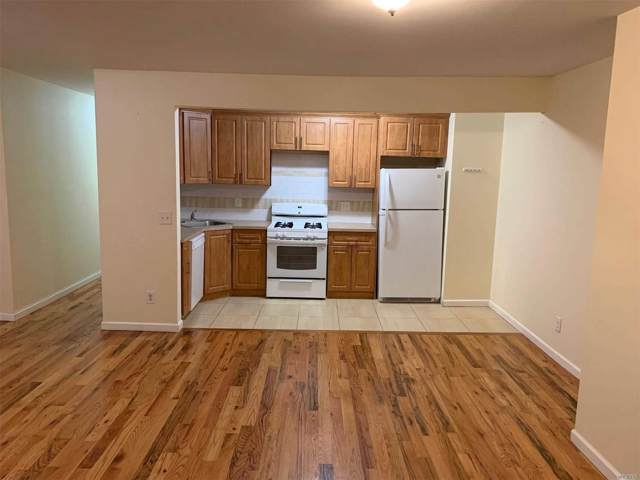 233 Vermont St, Brooklyn, NY 11207 (MLS #3183978) :: Keller Williams Points North