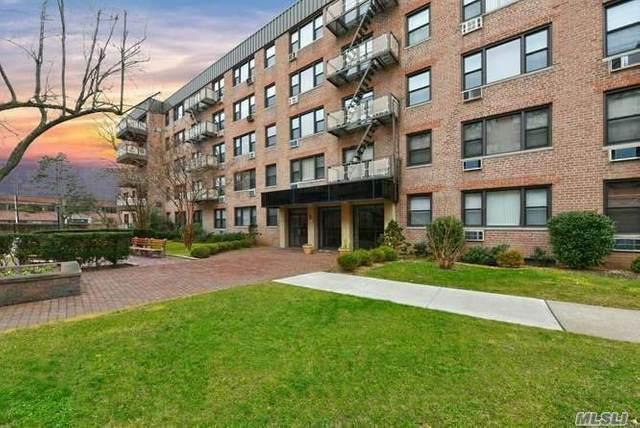 3 Birchwood Ct 3H, Mineola, NY 11501 (MLS #3198994) :: Kevin Kalyan Realty, Inc.