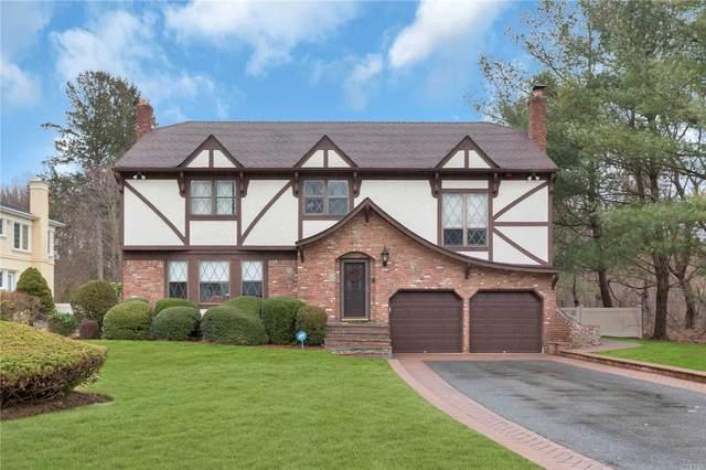 43 Pelican Ct, Syosset, NY 11791 (MLS #3199171) :: Signature Premier Properties