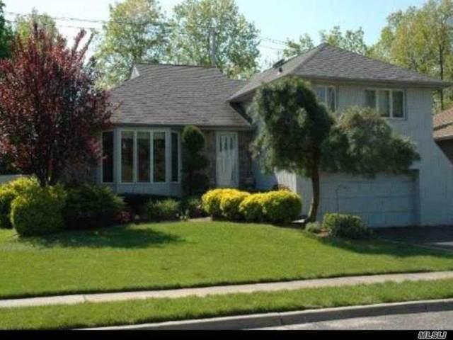 25 Sunbeam Rd, Syosset, NY 11791 (MLS #3199247) :: Signature Premier Properties