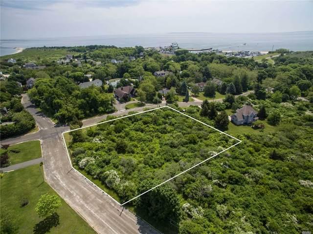 885 Plum Island Ln, Orient, NY 11957 (MLS #3202565) :: Denis Murphy Real Estate