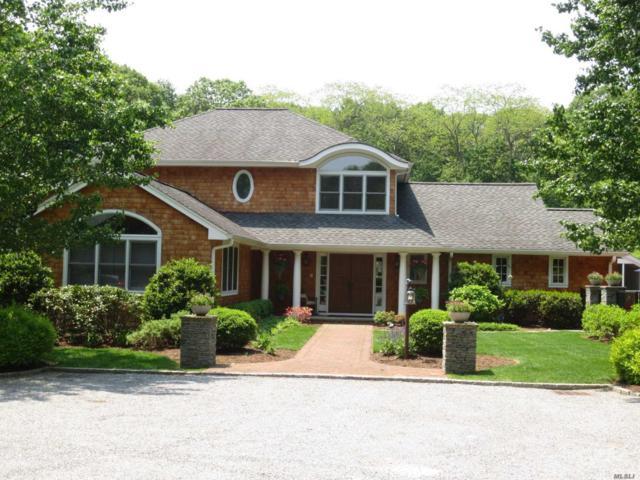 25 Thorman Ln, Huntington, NY 11743 (MLS #2975327) :: Netter Real Estate