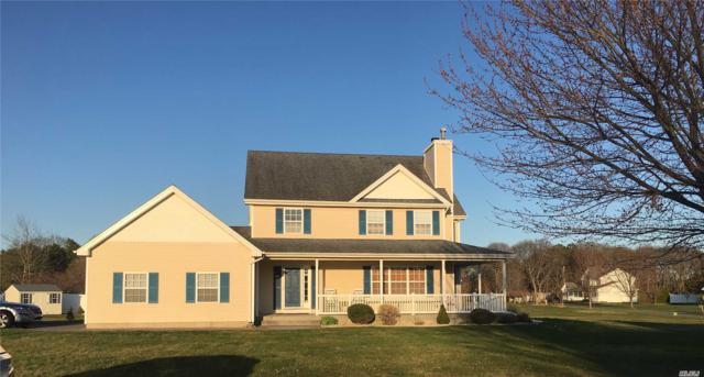 9 Christina Ln, Middle Island, NY 11953 (MLS #3022668) :: Netter Real Estate