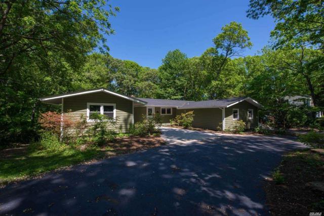 91 Stony Hill Path, Smithtown, NY 11787 (MLS #3032736) :: Keller Williams Points North