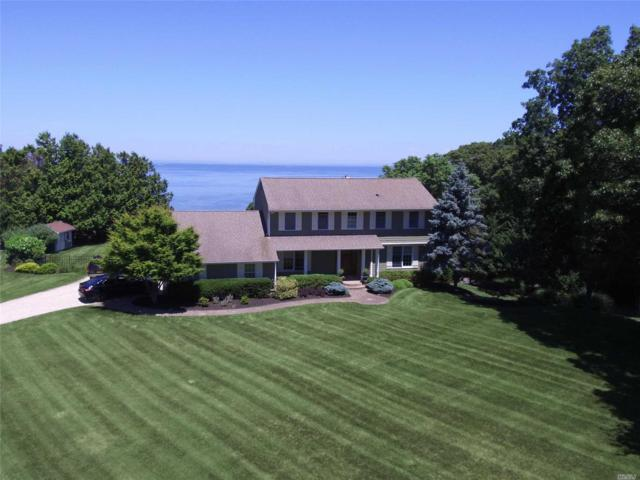 1 Driftwood Ct, Shoreham, NY 11786 (MLS #3047697) :: Keller Williams Points North