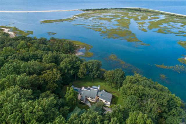 28 Lloyd Point Dr, Lloyd Neck, NY 11743 (MLS #3067545) :: Signature Premier Properties