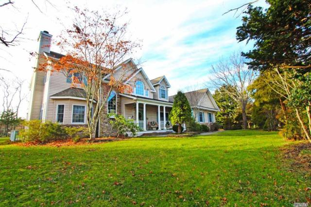 16 Briana Ct, East Moriches, NY 11940 (MLS #3088373) :: Shares of New York