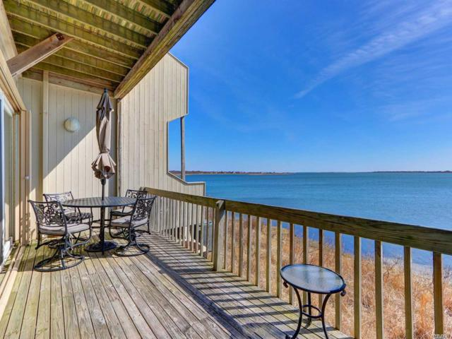 10 Waters Edge, Shirley, NY 11967 (MLS #3116697) :: Shares of New York