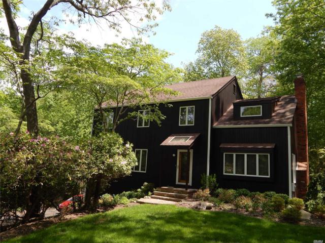 28 Mary Pitkin Path, Shoreham, NY 11786 (MLS #3130454) :: Signature Premier Properties