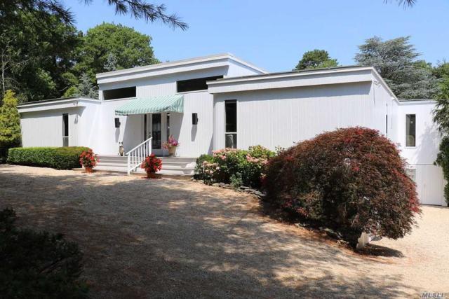 6 Pepi Ct, Hampton Bays, NY 11946 (MLS #3047051) :: Netter Real Estate