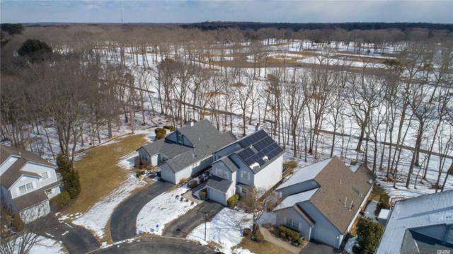 233 N Dorado Ct, Middle Island, NY 11953 (MLS #3106370) :: Netter Real Estate