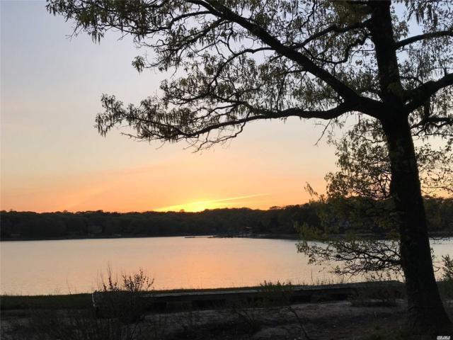 1 Lobster Way, Northport, NY 11768 (MLS #3129514) :: Shares of New York
