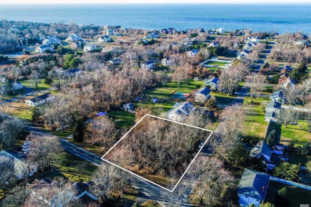 660 Sutton Pl, Greenport, NY 11944 (MLS #2992175) :: Netter Real Estate
