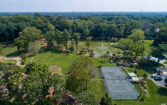 3 Hidden Pond Dr, Old Westbury, NY 11568 (MLS #3058148) :: Shares of New York