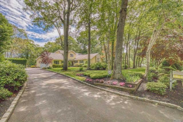 10 Tree Top Ter, Smithtown, NY 11787 (MLS #3113133) :: Signature Premier Properties